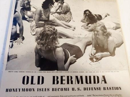 BermudaDay